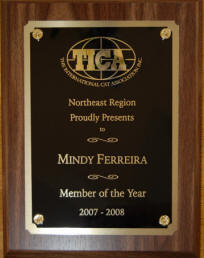 TICA Northeast Region Member of the Year 2007-2008